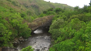 My first land bridge.
